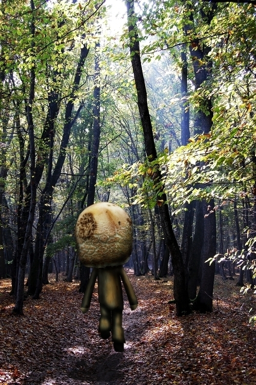 Walk Woods: Mushroom Man - artwork - aiakira | ello