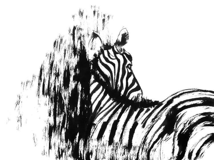 Zebra - zebra, zoo, animal, blackandwhite - sijie_ng | ello