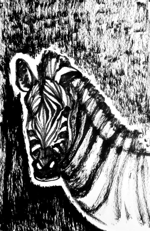 Zebra - zebra, zoo, animal, inkandbrush - sijie_ng | ello