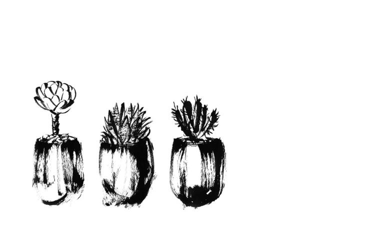 Succulent Plants - succulent, plants - sijie_ng | ello