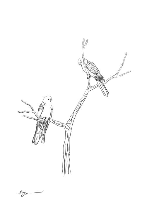 illustration, birds, drawing - rachelj-1394 | ello