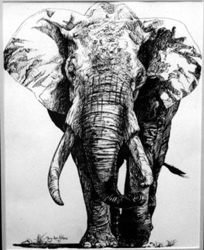 elephant pen ink - animals, animal - maryann-6495 | ello