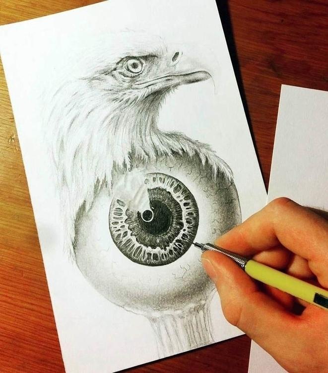 Eagle Eye 2015 - rob_e_don | ello