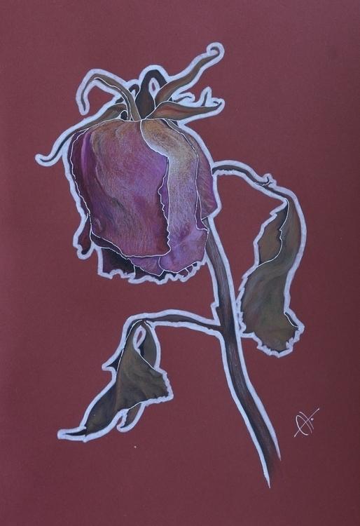 Rose - drawing, rose, flower - barbaroid | ello