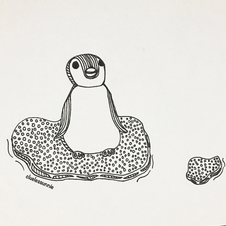 Penguin - illustration, drawing - hanvone | ello