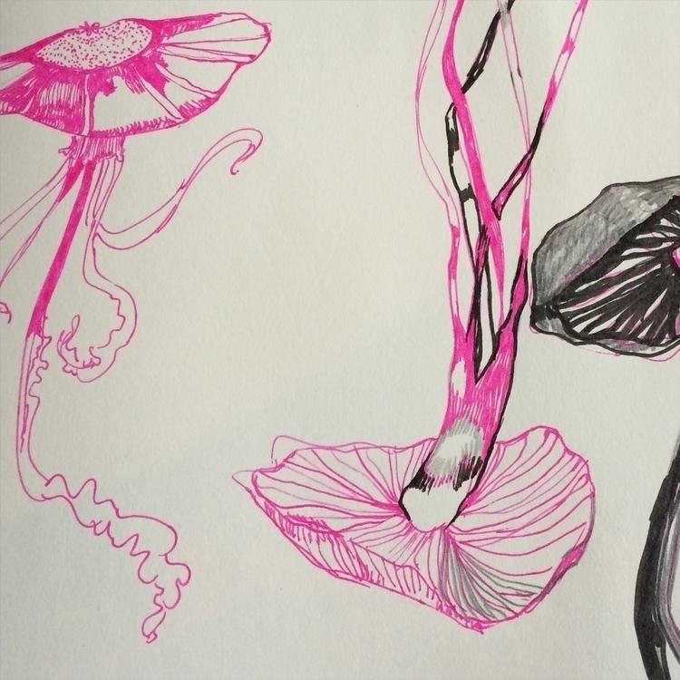 , , Drawing, jellyfish - yasminen | ello