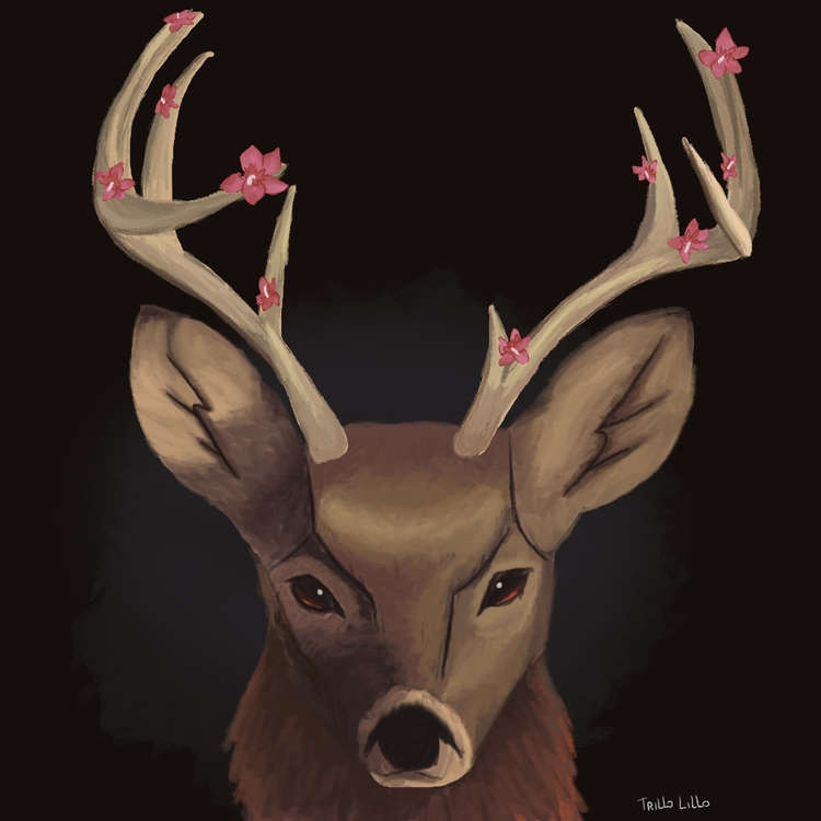 watch deer real life - illustration - trillolillo | ello