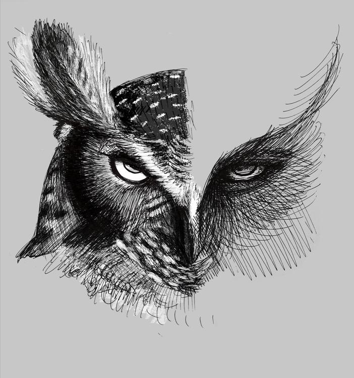 Owl - illustration, owl, blackandwhite - kyoka | ello