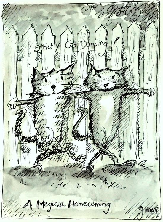 'Strictly Cats Dancing' 'Archie - ofdalbuie | ello