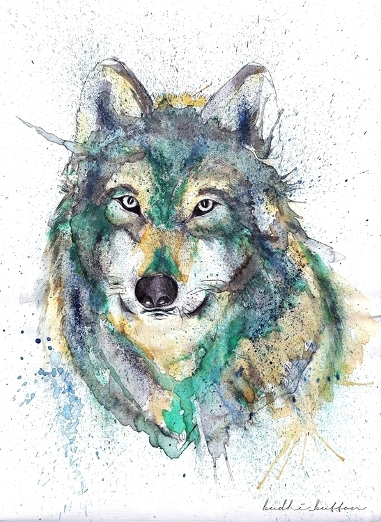wolf, water colour - illustration - budhi | ello