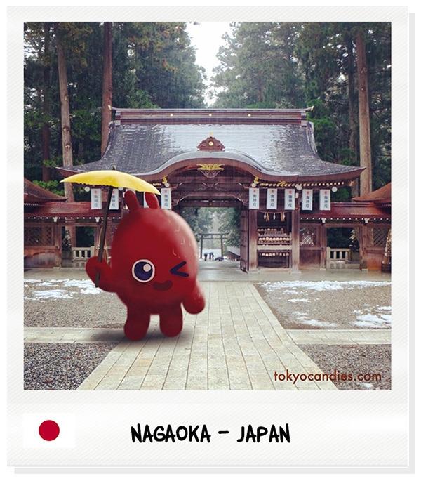 nagaoka, japan, temple, shrine - tokyocandies-1186 | ello