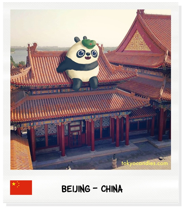 panda, china, beijing, summerpalace - tokyocandies-1186 | ello