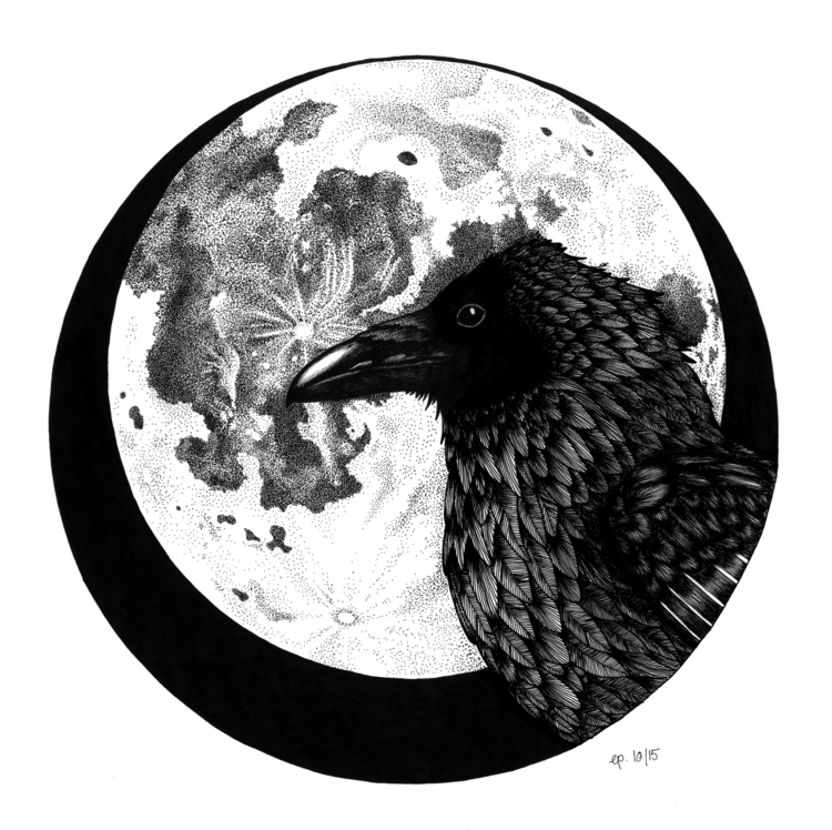 Raven - illustration, drawing, raven - ellenparzer | ello