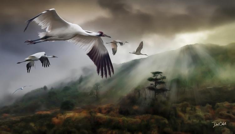 Wings Fujian - digitalpainting, digitalart - donolea | ello