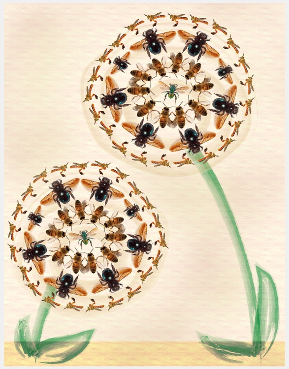 bees, flowers - amandaloyolla | ello