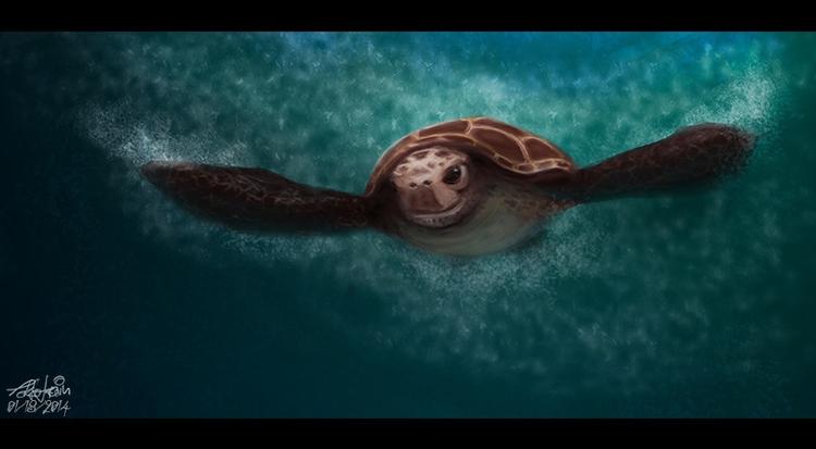 Sea Turtle - digitalpainting, digitalart - tokkatrain | ello