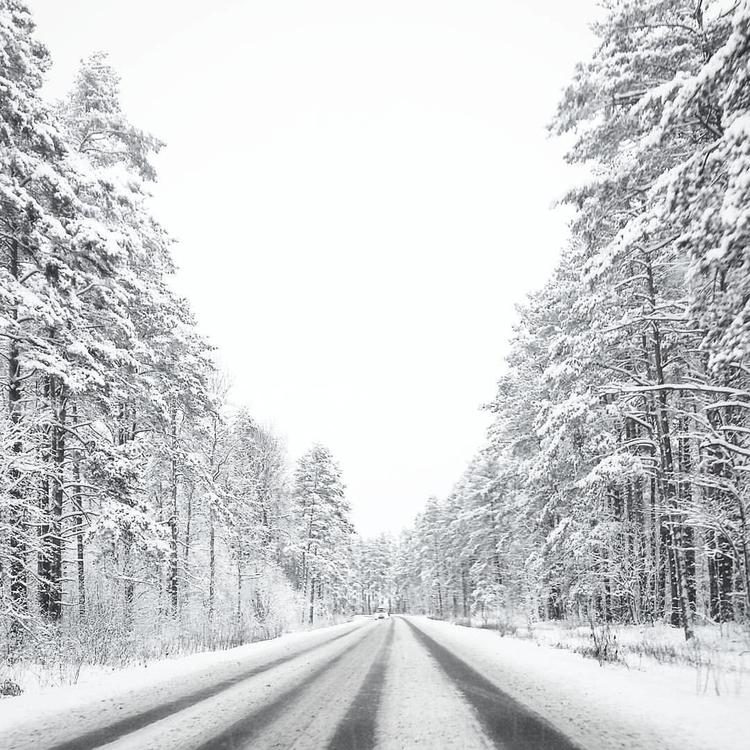 photography, road, roadtrip, snow - saffiri | ello