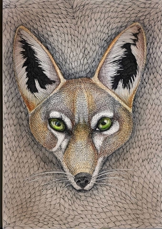 Jackal totem - illustration, jackal - ingakva | ello