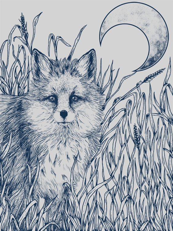 fox, nature, moon, illustration - cloud-3722 | ello