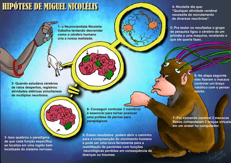 nicolelis, neuroscience, science - amandaloyolla | ello