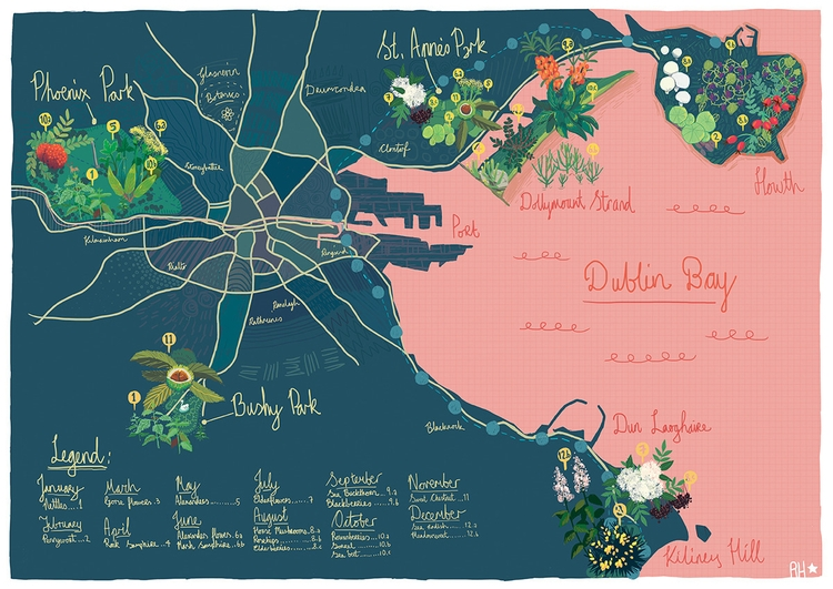 Dublin Foraging Map - illustration - hoshinorobin | ello