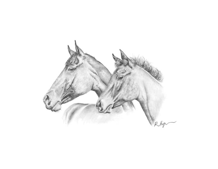 Mare Foal - 11x14 Graphite 2014 - bunny-2096 | ello