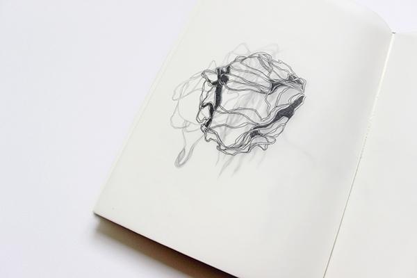 Voyage entre Réel Imaginaire - illustration - sarahnaud | ello