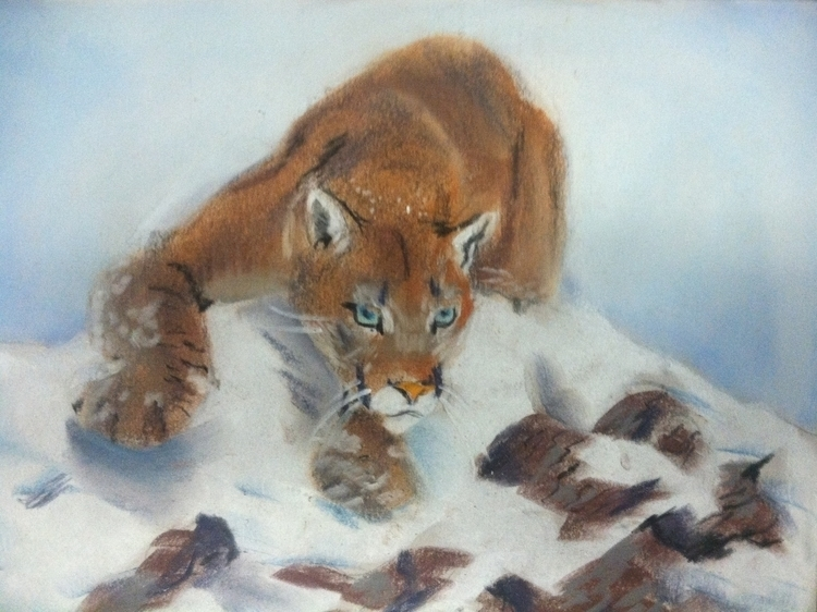 cougar - illustration, catamount - chimerikel | ello