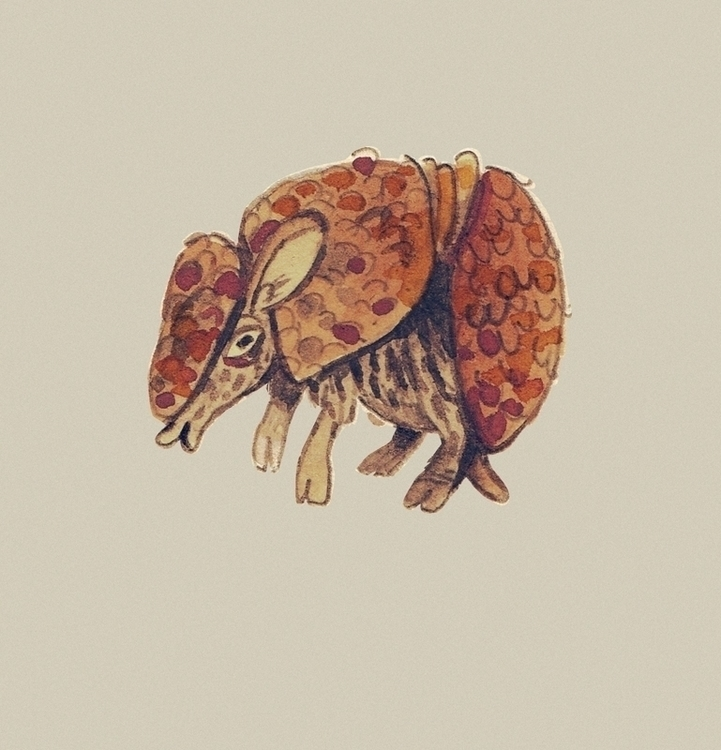armadillo - tanjir | ello