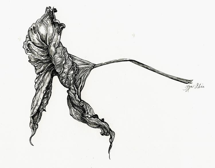 illustration, drawing - lyn-1488 | ello