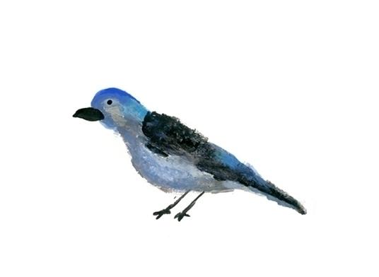 bird nailpolish - illustration, birds - sannevanhoutenontwerpt | ello