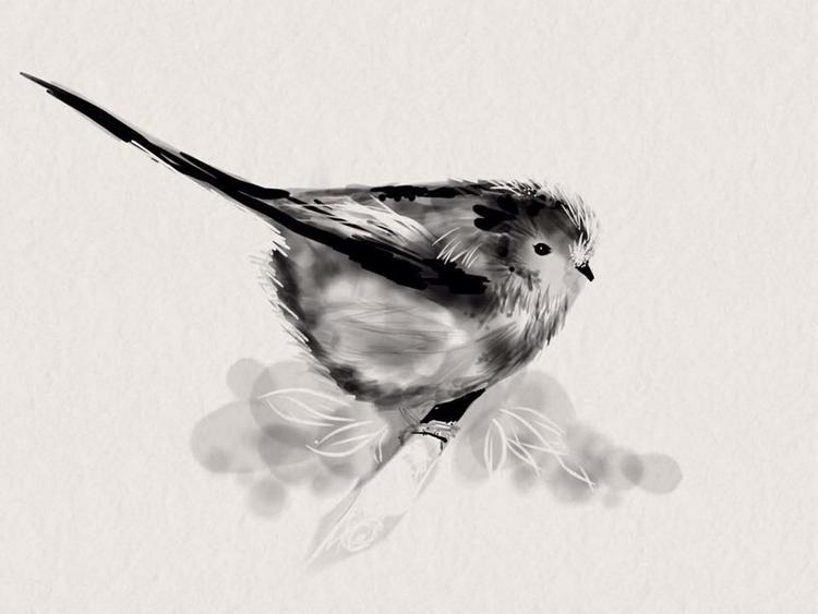 Long Tailed Tit - illustration, animals - beverleyhaines | ello