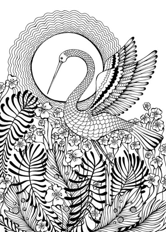 Crane - crane, sun, dance - depesha2 | ello