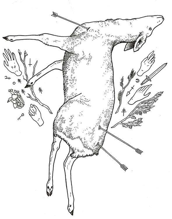 illustration, deer, line, nature - ameliaryan | ello
