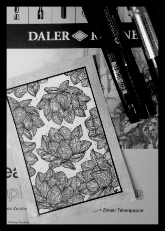 illustration, drawing, flowers - salutnoe | ello