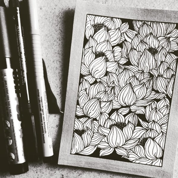 illustration, drawing, flowers - salutnoe | ello