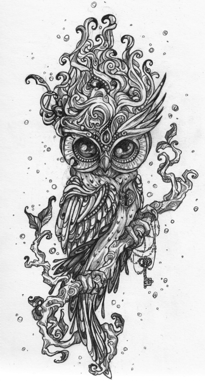 owl - drawing, characterdesign, tatoo - tenenbris | ello