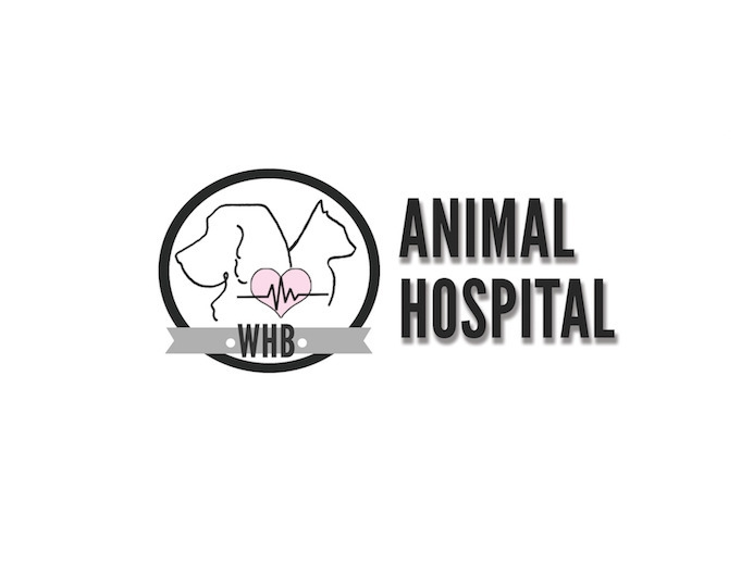 Westhampton Animal Hospital Log - bam_illustrations | ello