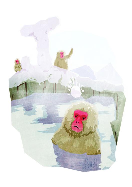 Japanese Macaque - animalalphabets - gemmagould | ello