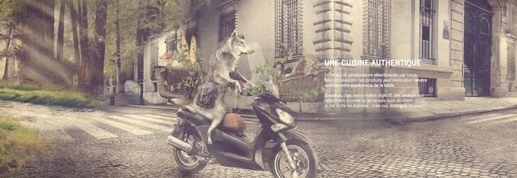 Loup website banner - photomanipulation - picturgency | ello