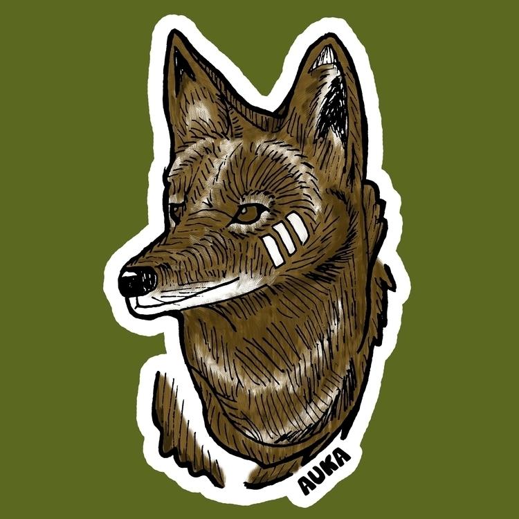 Coyote - illustration, characterdesign - kumavilla | ello