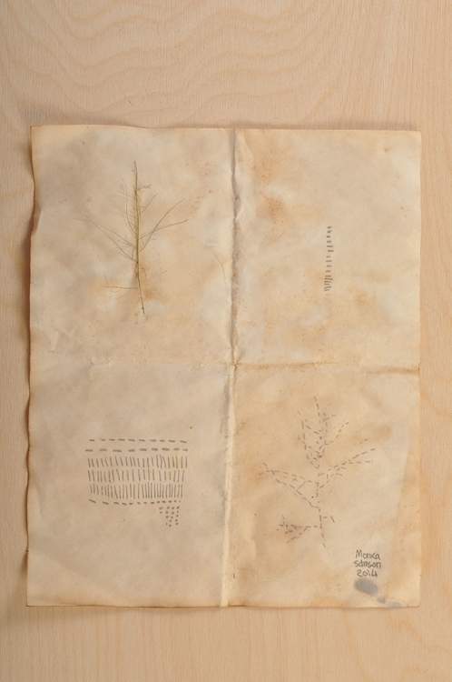 painting, drawing, Dyed, plants - monicasamson | ello