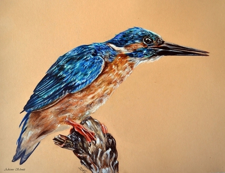 Bird - drawing, bird, coloredpencil - adriennschmitt | ello