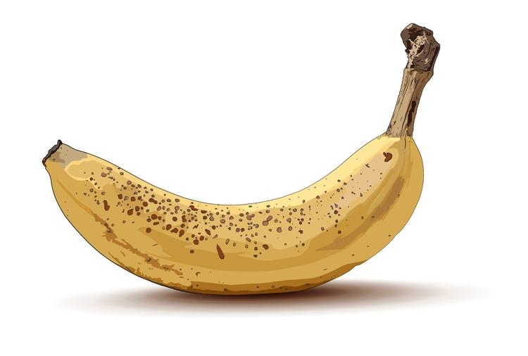 Banana - vectorart, vector, vectorillustration - helenratner | ello