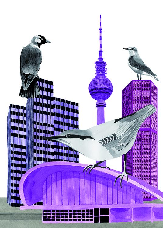 collage, illustration, birds - robincottage | ello
