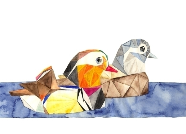 watercolour, illustration, ducks - robincottage | ello