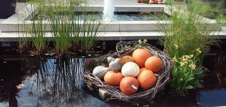 Fall display Cleveland Botanica - angelasabetto   ello