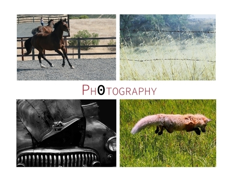 Photography - equine, nature, hotrod - bioniccowgirl | ello