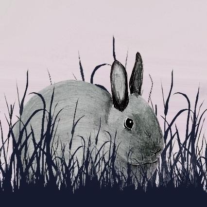 bunny, Mocki, pencildrawing, meadow - robincottage | ello