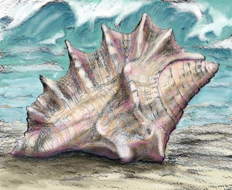 Digital painting Sea Shell - artistinme4ever | ello